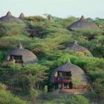 serengeti-serena-safari-lodge